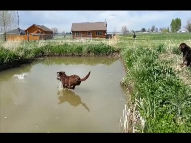 Dakota hitting the water, 5-11-13