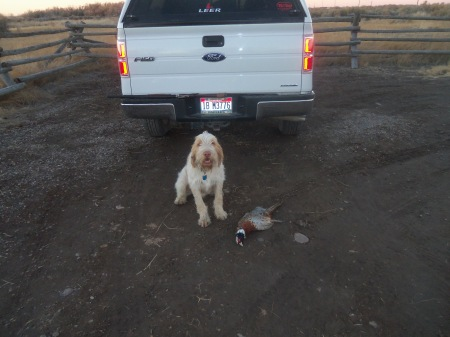 Success at the end of a long day of hunting.