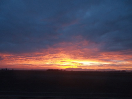 Nice sunrise while going hunting with Mia.
